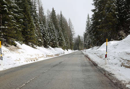 frozen mountains road with firs pines and other conifer in winter Stock Photo