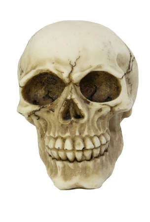 white skull with cracks with a white background Stock Photo