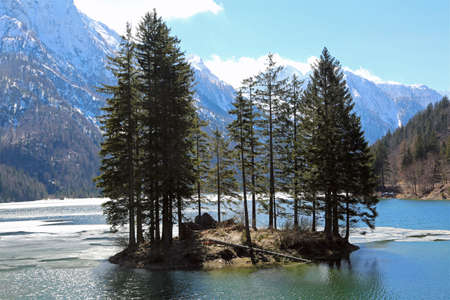 Island with trees on the alpine lake in winter
