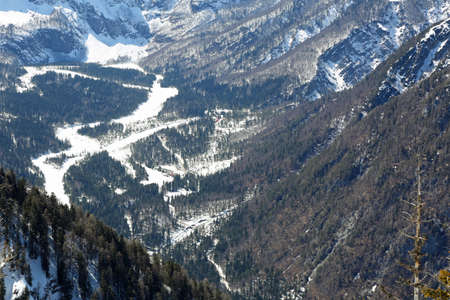 wide valley with snow and trees  between mountains in winter