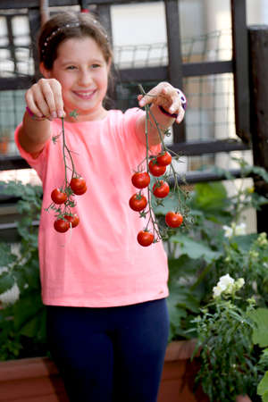 Pretty little girl shows the harvest of tomatoes Фото со стока