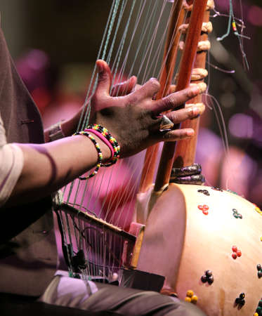 young african boy plays a stringed instrument at live concert