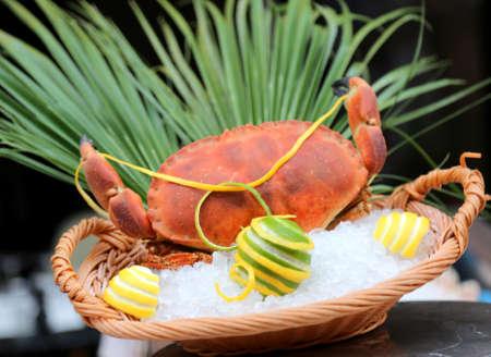 big crab on the ice at restaurant wtih lemon Stock Photo