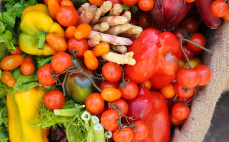 fresh fruits and vegetables just harversted for sale at local market Stock Photo