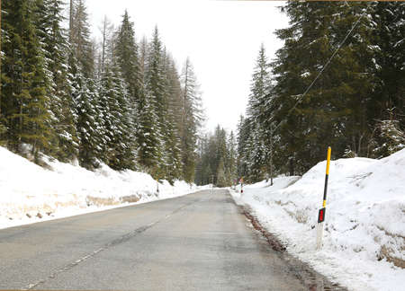 icy road passing through a forest with many snow-covered trees