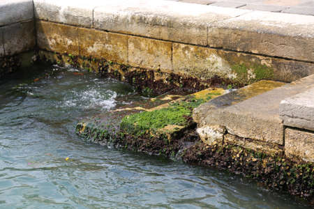 steps with algae and sea water during high tide in Venice in Italy Imagens