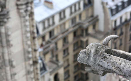 sculpture of a gargoyle of the gothic church of Notre Dame in Paris Stok Fotoğraf