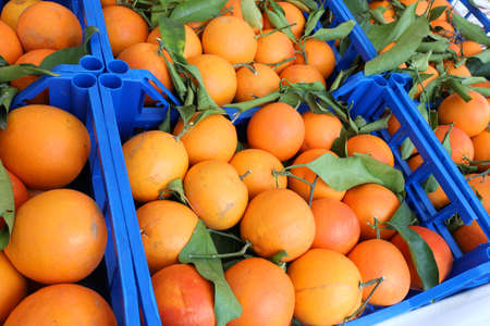 many organic orange oranges with leaves in the fruit box on sale at the market