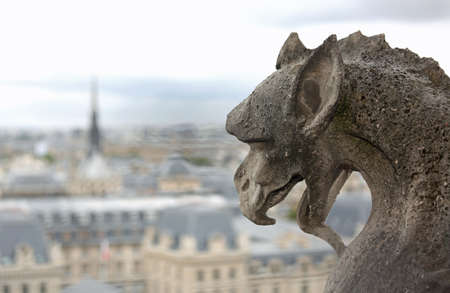 gargoyle shows the language in the church of Notre Dame a Parigi in Francia