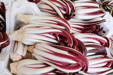 box of red chicory also called RADICCHIO TARDIVO in Italian Language for sale at greengrocer shop Banque d'images