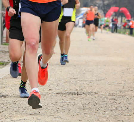 many runners at cross country outdoor race