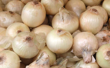 background of white organic onions for sale at market