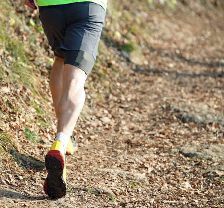muscular legs of the young athlete during a cross-country running race on the path in the middle of the woods