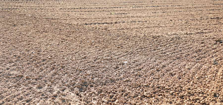 background of brown plowed land before sowing