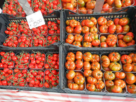 boxes of red tomatoes with tag price at greengrocer stand Stockfoto