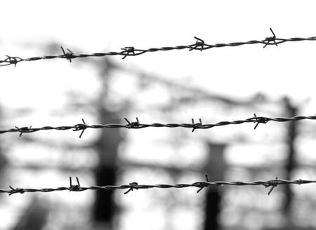barbed wires in black and white and blurred effect