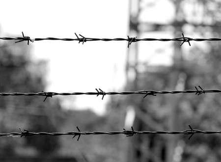 Stacheldraht im Konzentrationslager in Schwarzweiß und der Hintergrund verschwommen