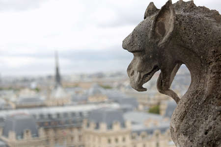Terrifying statue of a gargoyle the mythical winged monster with his tongue out in the cathedral of Notre Dame in Paris in France