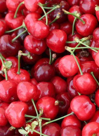 background of ripe cherries at market