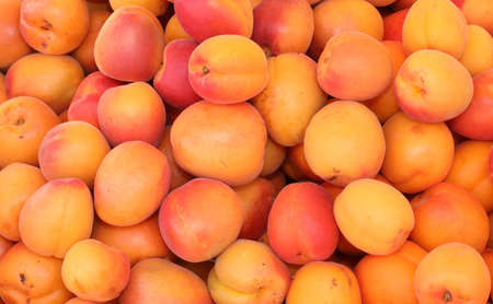 background of ripe apricots for sale at market in summer