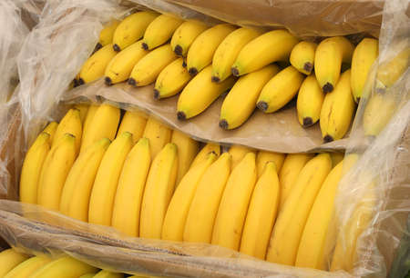 Box of Yellow Bananas for sale at supermarket