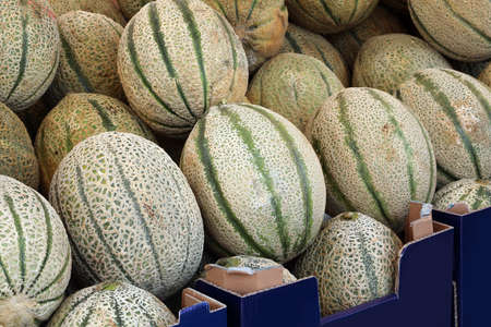 big ripe melons for sale at market