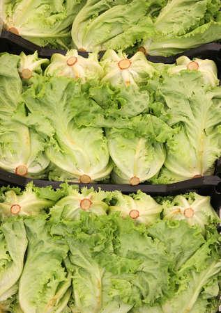 full boxes of green fresh lettuce for sale at market