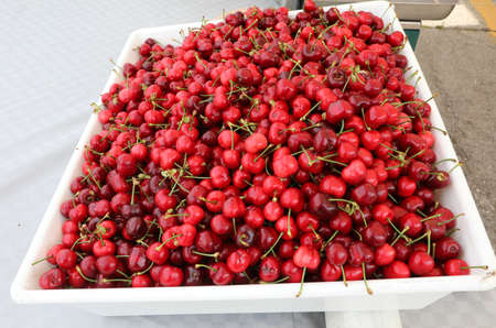 big tray full of red ripe cherries at market
