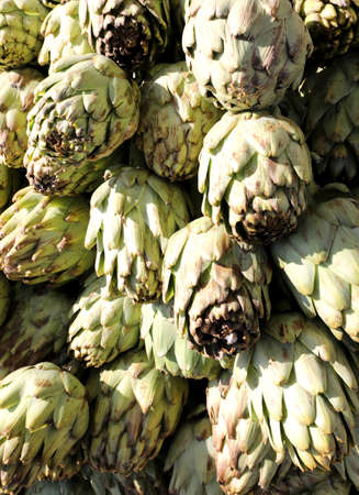 background of fresh green artichokes freshly picked for sale at the greengrocer Imagens