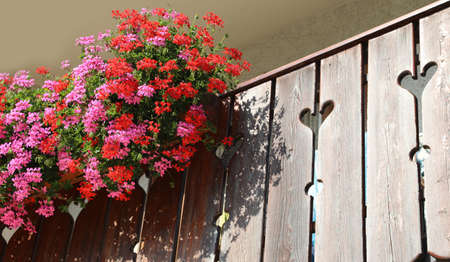 Balcony with many pots of geraniums and the banister with hearts shape Фото со стока