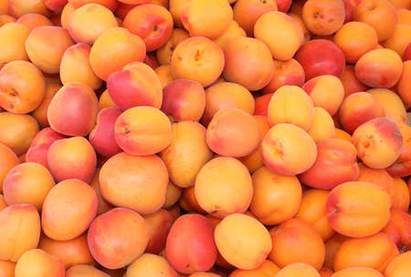 background of ripe orange apricots for sale at market in summer