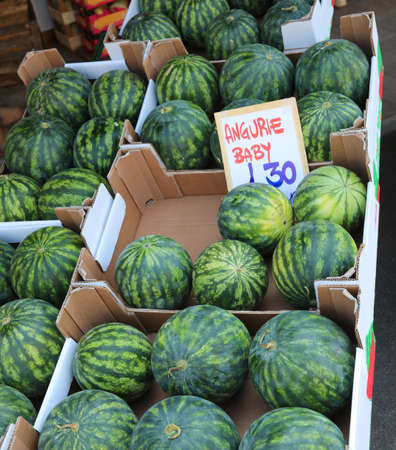 many boxes of Baby Watermelon called Anguerie in Italian language with tag price in summer for sale