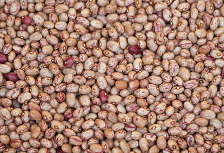 background of thousand dried painted beans