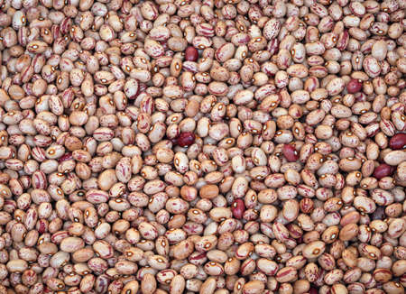 background of beans of pinto quality also called Borlotto in Italian language Фото со стока