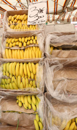 Stand with bananas on the boxes and the price tag at market