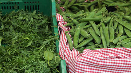 fresh green rocket arugula and peas in the pods