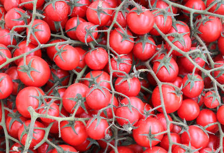 grapes of red cherry tomatoes for sale at greengrocer
