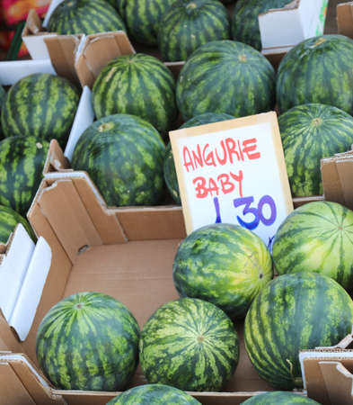 many fruits and the italian text that means BABY WATERMELONS for sale