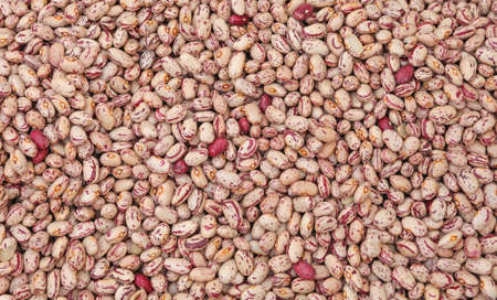 background of many fresh beans of Borlotto quality Archivio Fotografico