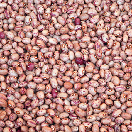 background of beans also called Borlotto in Italian language