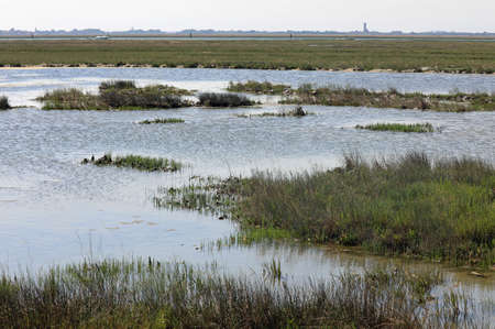 unspoiled natural landscape near the island of Venice in Italy called the Venetian Lagoon
