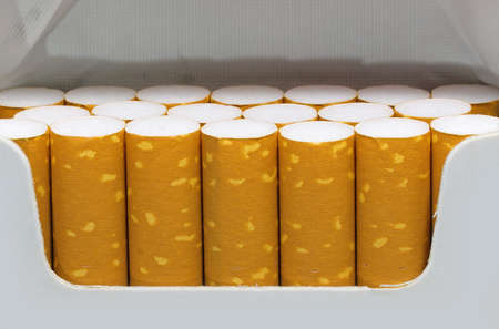 Detail of the filters of many cigarettes inside a packet just opened by the avid smoker