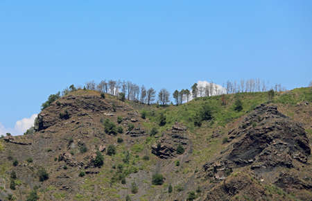 many tree on the top of an inactive dormant volcano and blue sky