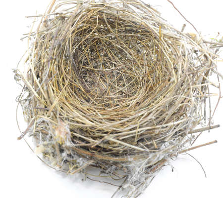 small bird nest made with straw and twigs twisted together on a white background