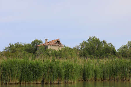 reed by the river and a old house in Europe