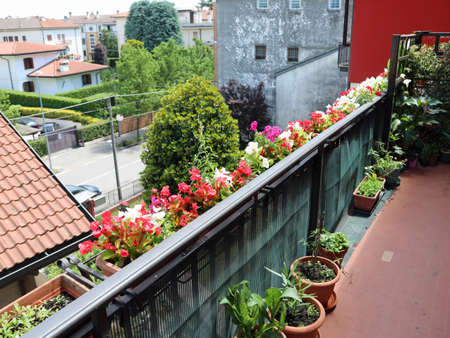 many flower pots in spring on the railing of the house in the city 免版税图像
