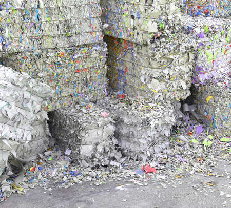 waste paper in the paper mill for the production of recycled paper