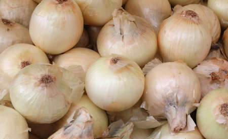 background of white organic onions for sale