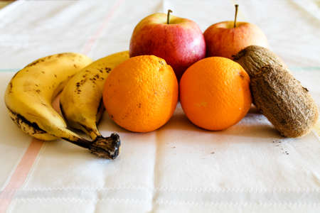 apples and oranges: oranges bananas kiwi and apples Stock Photo