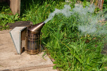 Old Smoker standing on the hive. A bee smoker is a device used in beekeeping to calm honey bees. It is designed to generate smoke from the smouldering of various fuels, hence the name. Stock Photo